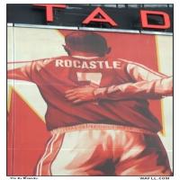 Rocky Tribute