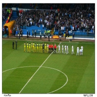 Line Up For The Owls