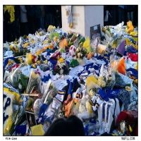 A Mountain Of Tributes