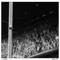 Jubiltations In The Main Stand