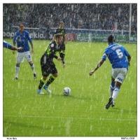 Ross In The Rain