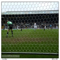 From The Back Of The Net
