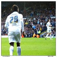 Gradels Back
