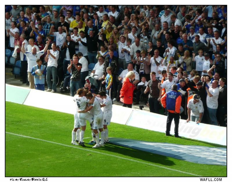 Celebrate Against the Swans