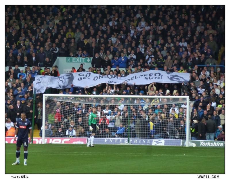 The Speedo Banner