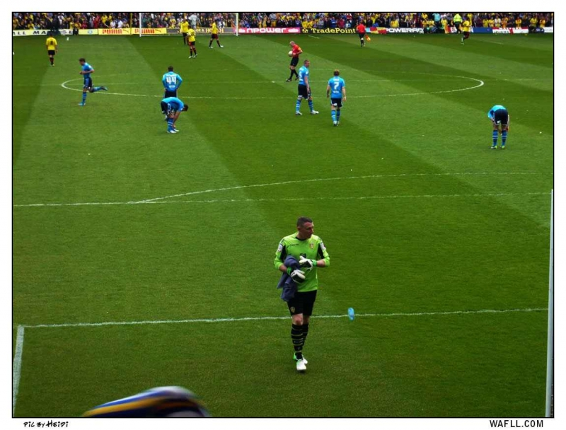 Paddy Approaches The Leeds